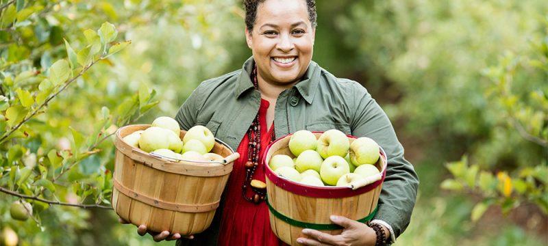 apple picking virginia